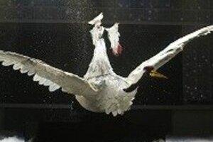 小林幸子の紅白衣装 「巨大鶴」にAKB48びっくり