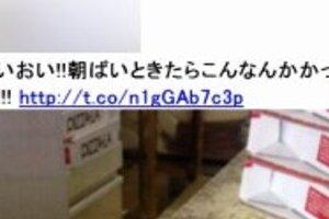 ピザーラ店員また不潔「バイトテロ」写真 ピザケースの隣にネズミの死体、「これは完全にアウト!」