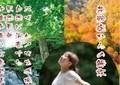 杉を伐採、広葉樹を育てる運動が「苦戦中」 宮崎県の任意団体「花粉症撲滅センター」に寄付金集まらず