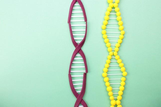 遺伝子治療の6割はがんが標的(画像はイメージ)