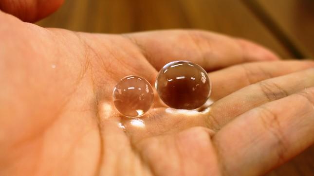 「謎のプニプニ」は未確認生物か?(写真は2015年6月23日撮影 左は「園芸用の給水ポリマー」右は「ジェル型芳香剤」)