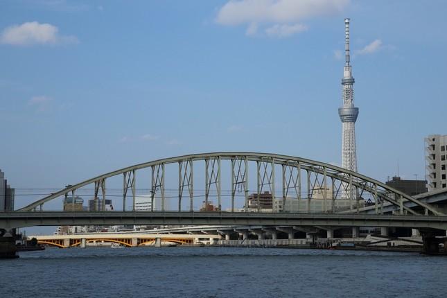 隅田川からはスカイツリーも見える