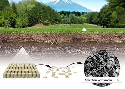 ゴルフ場で土を採取したことが話題に(画像はノーベル賞サイトから)