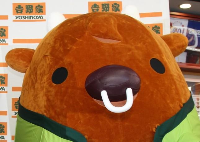 吉野家の「牛丼」3か月、毎日食べても健康リスクはあまりない・・・(写真は吉野家の公式キャラクター「よっぴー」 2013年9月撮影)