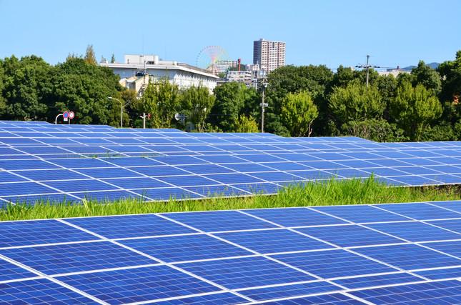 再生エネルギー普及のため優遇されてきた太陽光発電