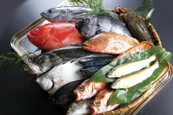 ビタミンDは魚に多く含まれている