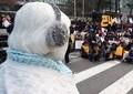 「『挺対協』派」以外の慰安婦は日韓合意に肯定的 撤回を主張している団体に拒否感も