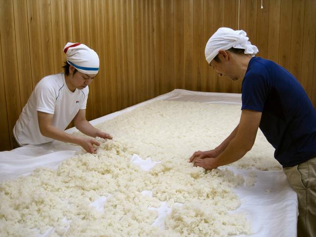 麹室(こうじむろ)で麹造りの作業