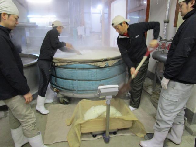 出来上がった蒸米をスコップで掘り出し計測し、仕込みに運ぶ