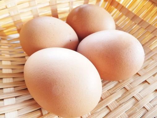 無実が晴れた卵。安心して食べよう