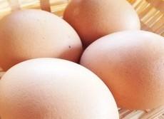 卵 「高コレステロール」の冤罪が晴れた 長寿日本の栄養を支えた「大恩人」復活