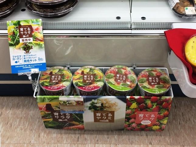 総菜売り場の一角に陳列された「育てるサラダ」