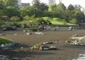 「温泉止まる」「池が干上がる」熊本地震で地下水脈に「異変」 水道8割「地下水」の熊本に戸惑い広がる