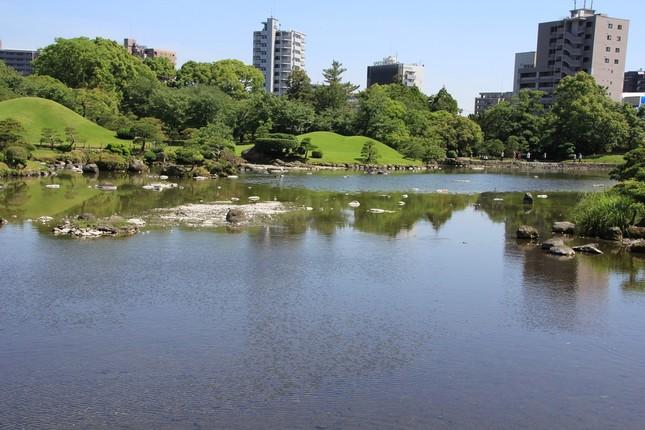 水位が回復した池の様子(5月17日J-CASTニュース撮影)