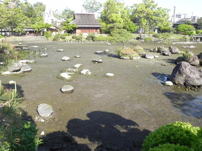 地震直後は、池底の大半が露出する状況だった(画像は水前寺成趣園提供)