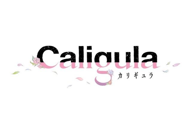 6月23日発売予定のプレイステーション Vita用ソフト「Caligula -カリギュラ-」(C)FURYU Corporation.