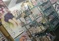 投票すれば「エロゲ」も割引の札幌キャンペーン 18歳選挙権で変わった対象商品