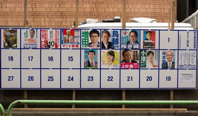 2016年都知事選の選挙ポスター掲示板