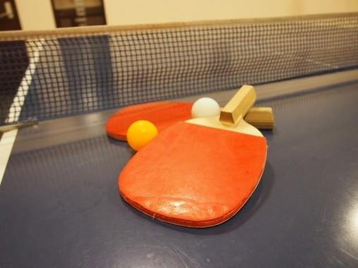 日本卓球界の「歴史」を変えた水谷選手にネット熱視線