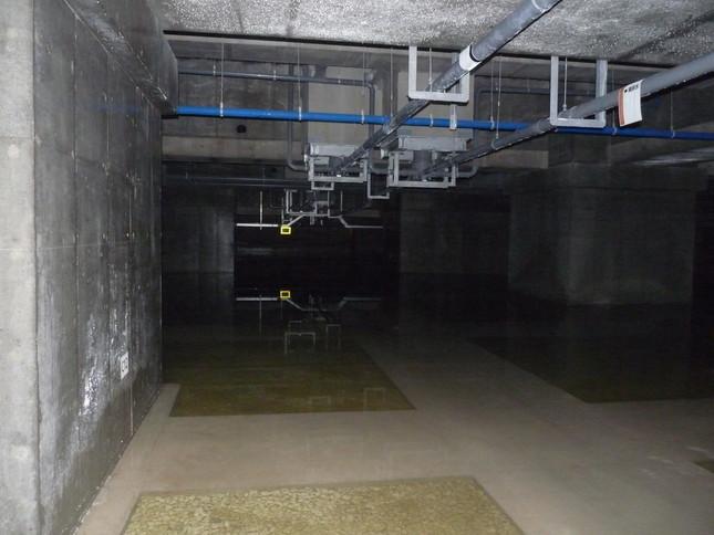 青果棟床下は一面水たまりだった(共産党都議団9月14日夕撮影・提供)