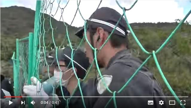「触るなコラァ」と威嚇(YouTubeに投稿された動画より)