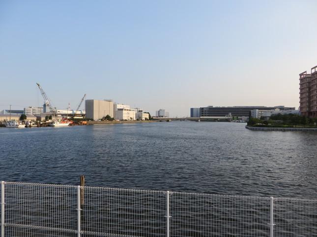 ゴジラは直進方向から海老取川を進み、画面右の呑川へ入った(2016年9月2日、Jタウンネット編集部撮影)
