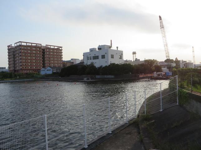 右側が呑川(2016年9月2日、Jタウンネット編集部撮影)