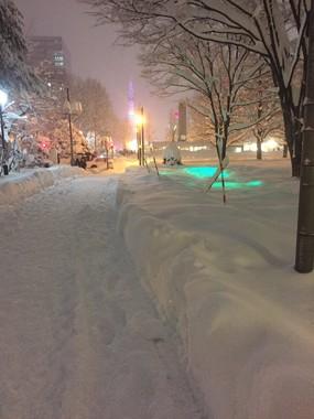 sirohera(@sirohera)さんのツイートより。同じく雪に埋もれた大通公園のイルミネーション
