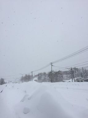 View of *(@yoshi_s_photo)さんのツイートより。まさに「どれが河やら道さえしれず」