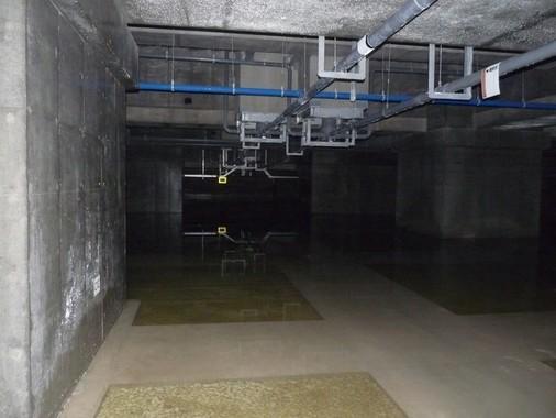 調査が行われた豊洲市場の地下空間(共産党都議団9月14日夕撮影・提供)