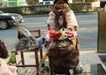 「どこの国の外相なのか」 韓国ユン・ビュンセ外相が袋だたき
