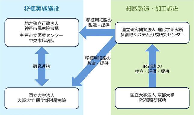 加齢黄斑変性を根本的に治療できる手術となる可能性も(画像は神戸市立医療センター中央市民病院プレスリリースより)