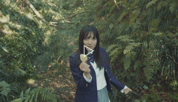どんな形でもまた鈴木さんを見れて嬉しい、という声も(写真は湖池屋のHPから)