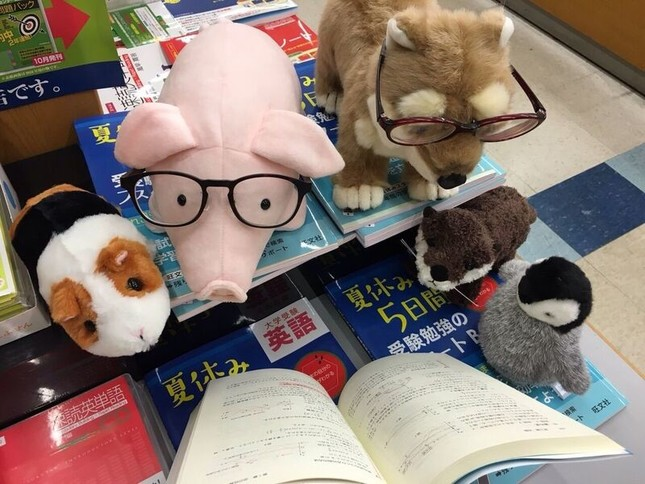 ぬいぐるみが仲良く絵本を読んだり、書店内を探検したり(岡崎善弘・岡山大学講師提供)