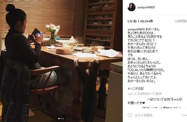妹ひかりさんの写真を投稿(画像は石田ゆり子さん公式インスタグラムのスクリーンショット)