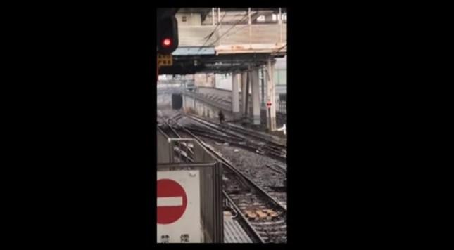 男が線路上を実際に逃走し、議論が再燃した(提供:ばしばし(@tsuyoshi3800)さん)