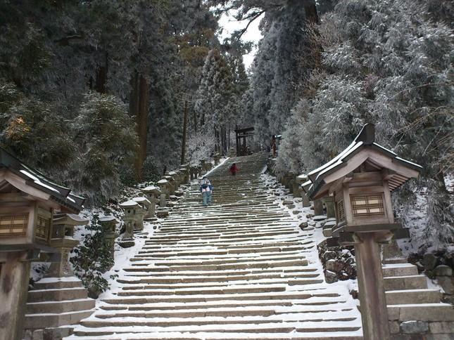 冬の愛宕神社参道(永太郎さん撮影)