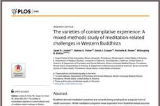 瞑想の「副作用」を指摘 米国でブームの療法を調査