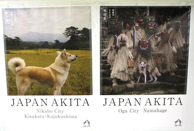 東京・新宿駅構内に掲出されている秋田県のポスター。「男鹿市 なまはげ」(右)と「にかほ市 象潟(きさかた)・九十九島」