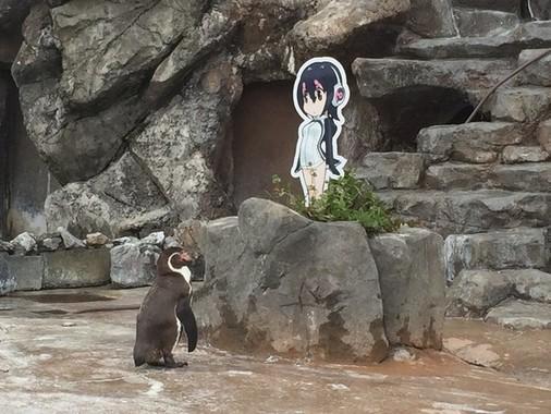 じーっと見つめるグレープくん(東武動物公園提供)