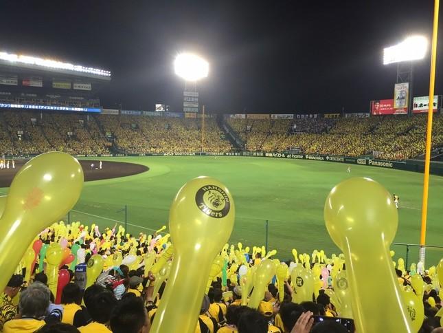 甲子園球場で行われた阪神対巨人戦で鳥谷が顔面に死球を受けた