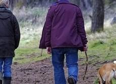 老いては犬に従え!? 一緒にいれば推奨運動量を軽くクリア