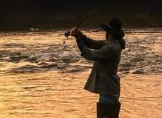 淡水魚の生食でも寄生虫の危険 タイでは肝臓がん、日本では...