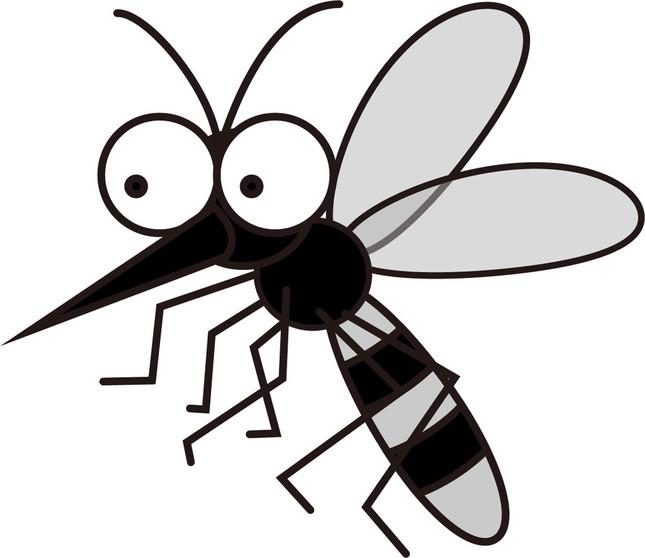 蚊は健康で活動的な人を好む