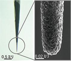 「針状ダイヤモンド電極センサー」と、動物実験の様子(合同チームの発表資料より)