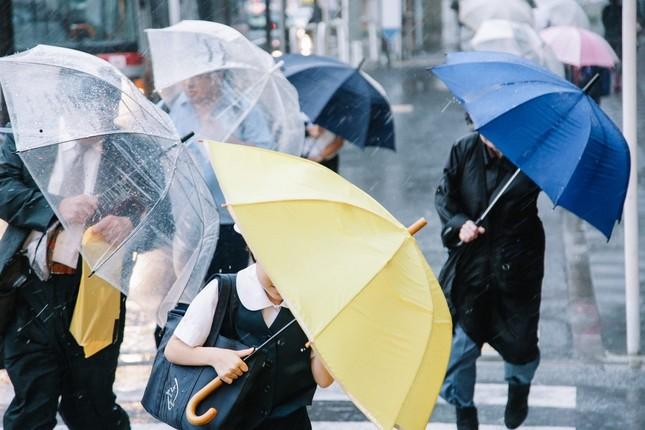今年の夏、都内では傘が大忙し