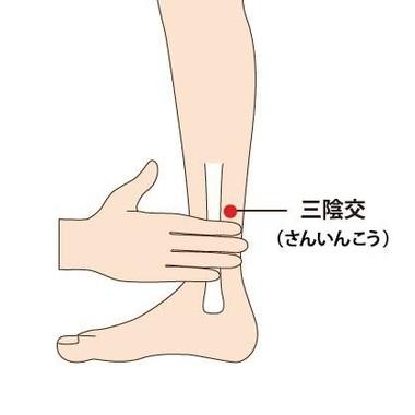 足の内側のラインにあるツボ「三陰交」