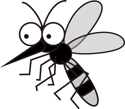 蚊が媒介するはずの感染症だが