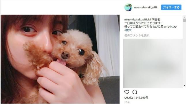 投稿された愛犬「キス」写真