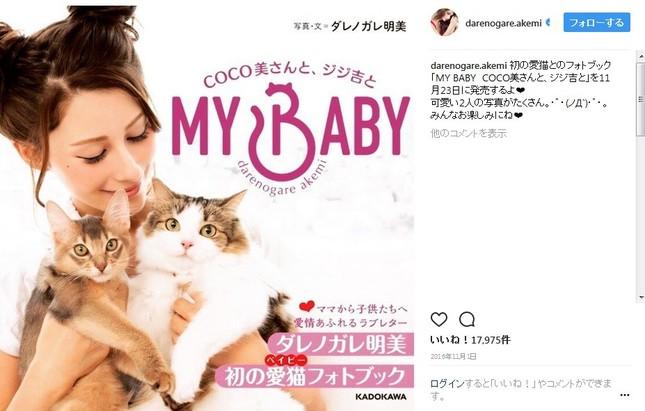 愛猫とのフォトブックを出版しているダレノガレ明美さん(画像は公式インスタグラムのスクリーンショット)